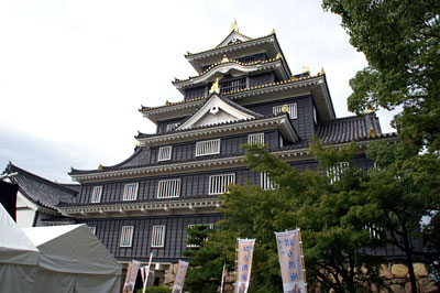 岡山城(通称:金烏城)